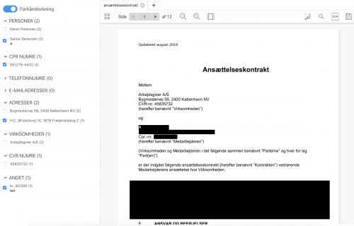 forhåndsvisning af anonymiseret dokument